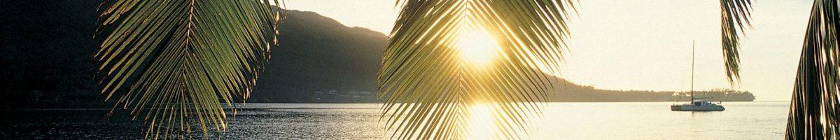 suspension vols polynesie covid
